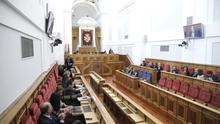 Unanimidad política para dar el visto bueno a la Ley de Academias de Castilla-La Mancha