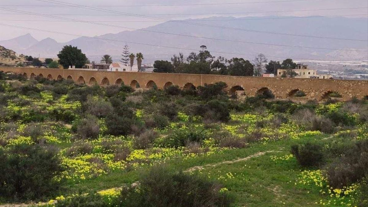 Acueducto del siglo XIX derribado en un municipio de Almería