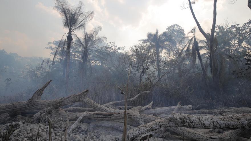 Imagen de un bosque quemado en la aldea de San Pablito, Bolivia. Mighty Earth