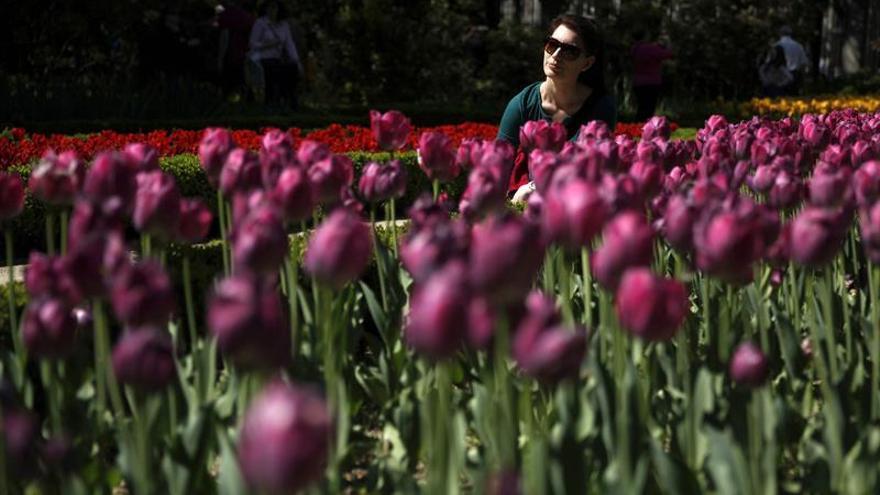 El Botánico celebra el Día del Libro con una Vuelta al mundo en 80 plantas