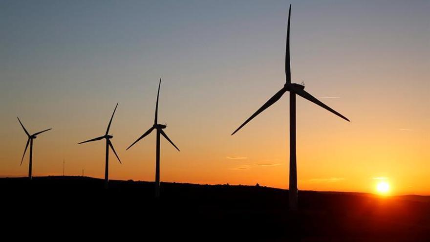 Brasil inaugura un complejo eólico en la árida región del Noreste