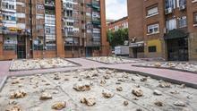 Orcasur: un jardín de piedras como síntoma de un urbanismo degradante en el extrarradio de Madrid