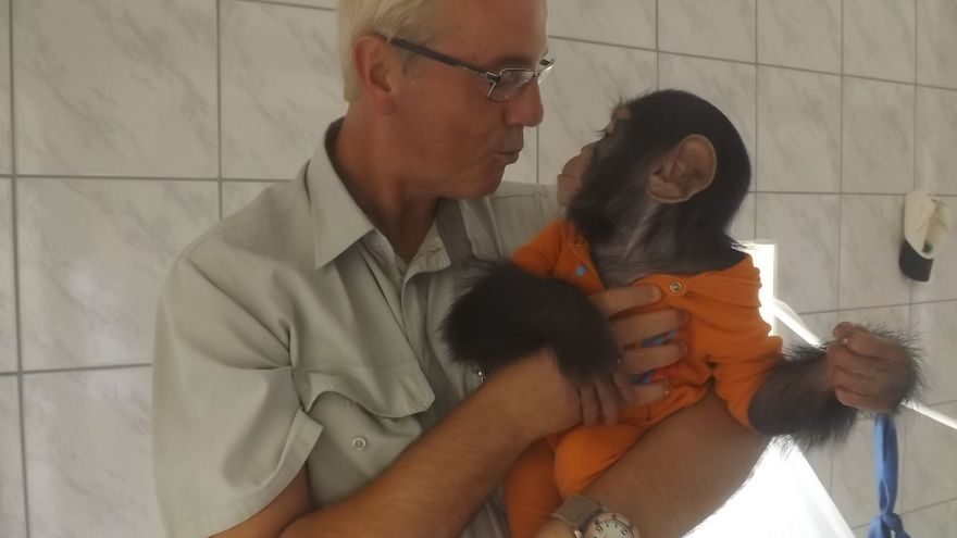 Pedro Pozas con un bebé gorila rescatado. Foto: Proyecto Gran Simio