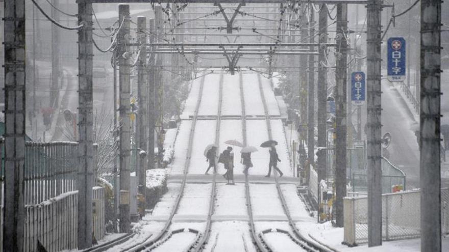 Cae sobre Tokio la primera nevada en noviembre en más de 50 años