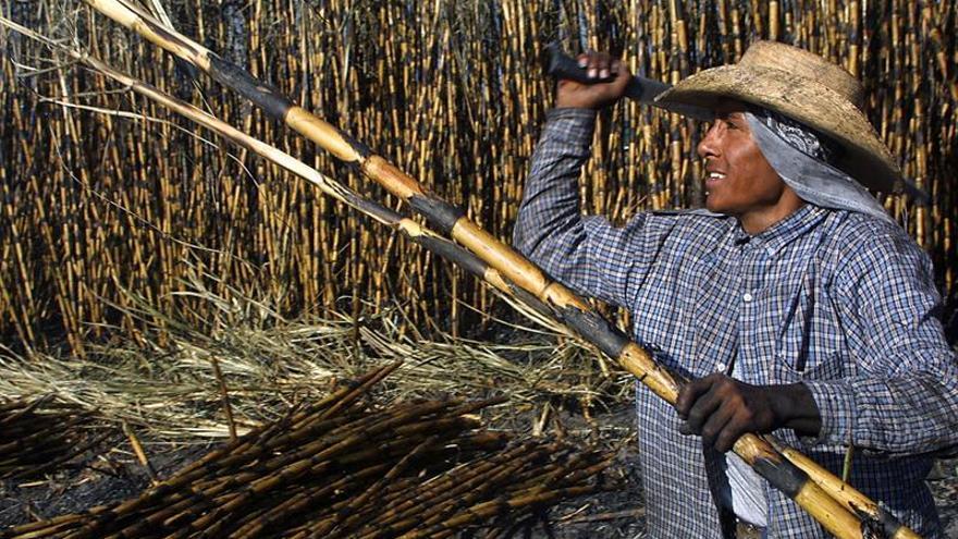 El Salvador asume la presidencia de la Organización Internacional del Azúcar (OIA)