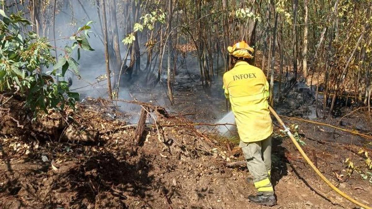 Bombero trabajando en el incendio