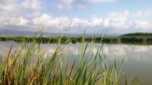 Vistas del Delta del Ebro.