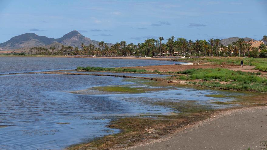 """La recuperación del Mar Menor, un proceso """"largo y muy complejo"""", según IEO"""