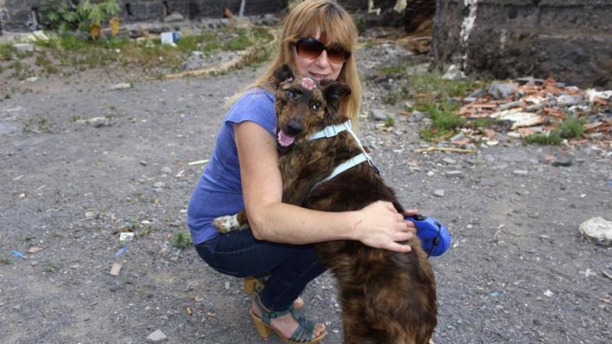 La presidenta de la protectora de animales Pro Animal Gomera, Dominique Lecroc, con la perra que el pasado mes de febrero fue golpeada con un palo y arrojada a un barranco por un hombre