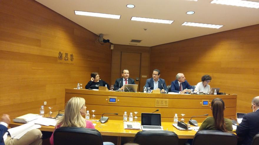 El director del IVF, Manuel Illueca, comparece en les Corts