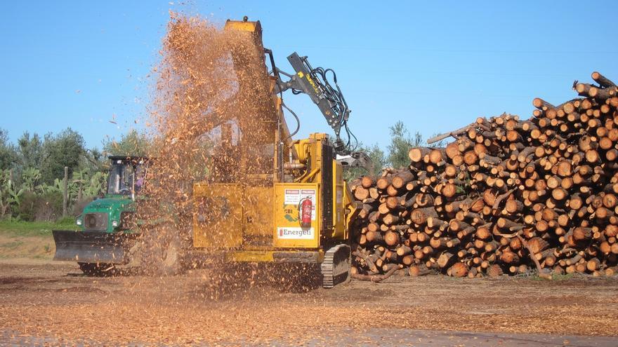 La Junta incentiva cerca de 23.000 proyectos de biomasa con 61 millones de euros