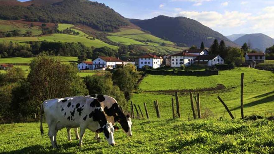 Explotación ganadera con casa rural en Navarra / Red Rural
