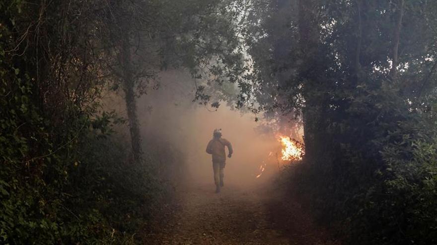 Portugal bate de nuevo su récord de incendios con 226 fuegos registrados hoy