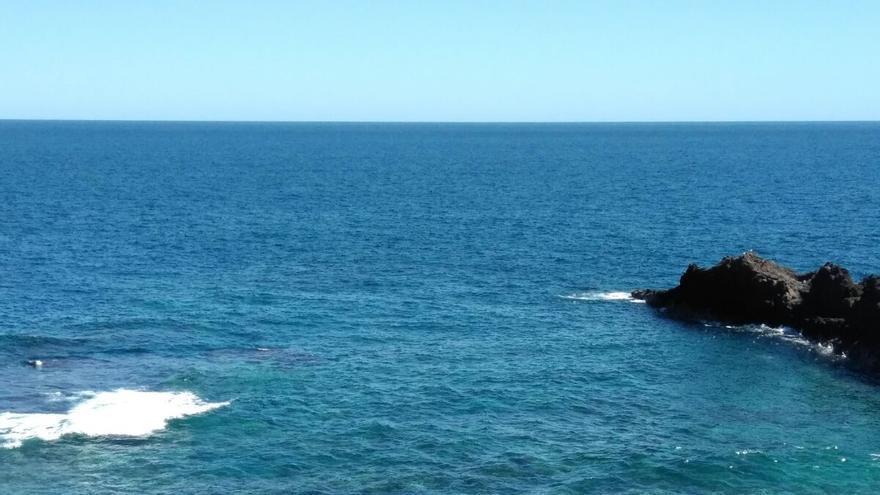En la imagen, la ballena en la zona de El Varadero.