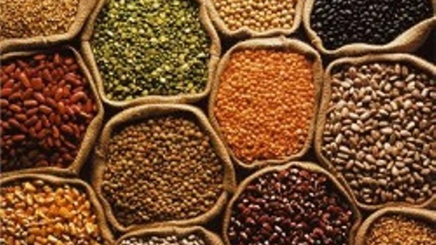 Muestra de diferentes variedades de semillas.