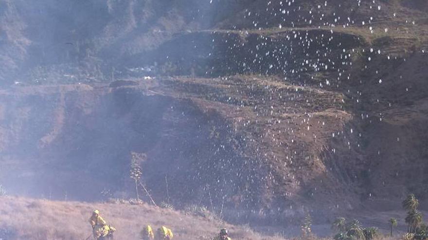 El Cabildo de Gran Canaria alerta de que los fuegos son ocurridos en la Isla son intencionados