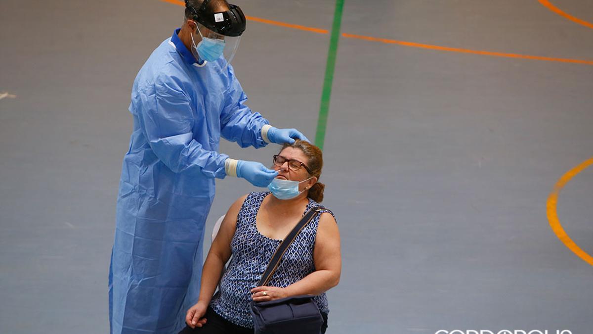 Realización de test covid masivos en el polideportivo de Almódovar del Río