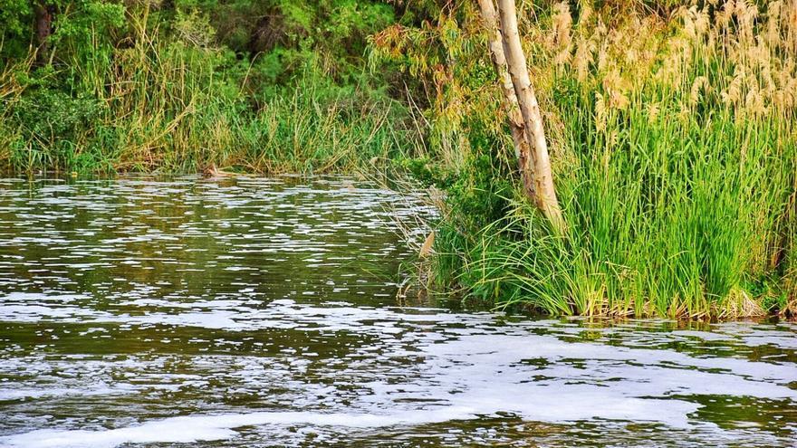 Río Tajo a su paso por Talavera de la Reina