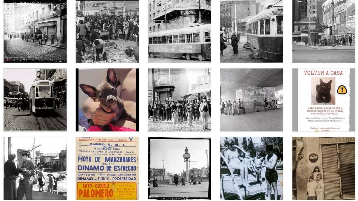 Mosaico de imágenes de Amigos de Tetuán de las Victorias que da idea de su contenido