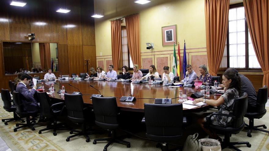 Comisión General de Planificación, Seguimiento y Evaluación del Plan Integral de la Juventud