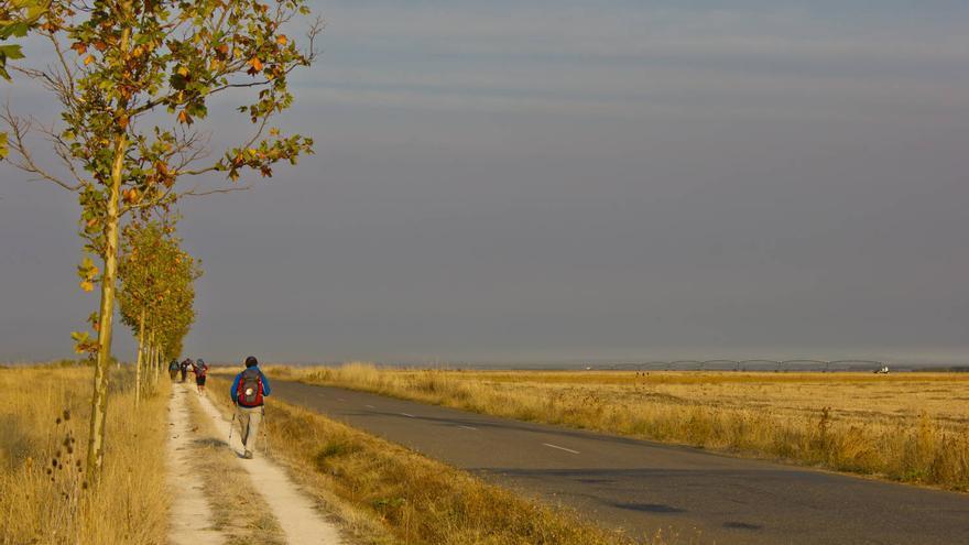 Andadero junto a la carretera entre El Burgo Ranero y Mansilla de Las Mulas. VA
