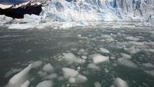 Estudio advierte que el cambio climático modificará la diversidad biológica