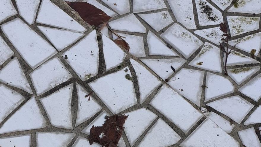 """Eguzki lamenta la pérdida de """"quizás el último"""" martín pescador """"urbano"""" de San Sebastián tras chocar con una cristalera"""