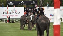 Cancelan el polo sobre elefantes en Tailandia tras críticas por maltrato