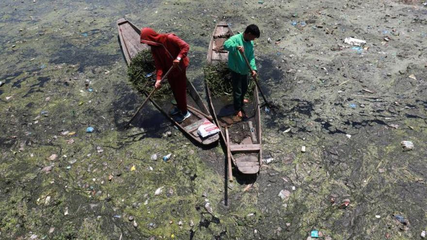 Mil kilómetros de peregrinaje para combatir el uso de plásticos en la India