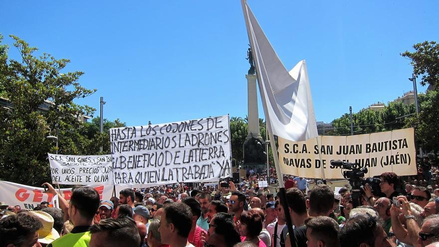 """Miles de agricultores protestan ante la """"situación de emergencia"""" en el olivar"""