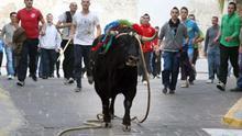 El consejo de festejos taurinos pide eliminar el requisito de un segundo médico en los 'bous al carrer'