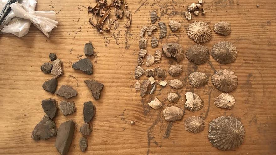 Algunos de los restos arqueológicos encontrados en la cueva de Las Mejoras.