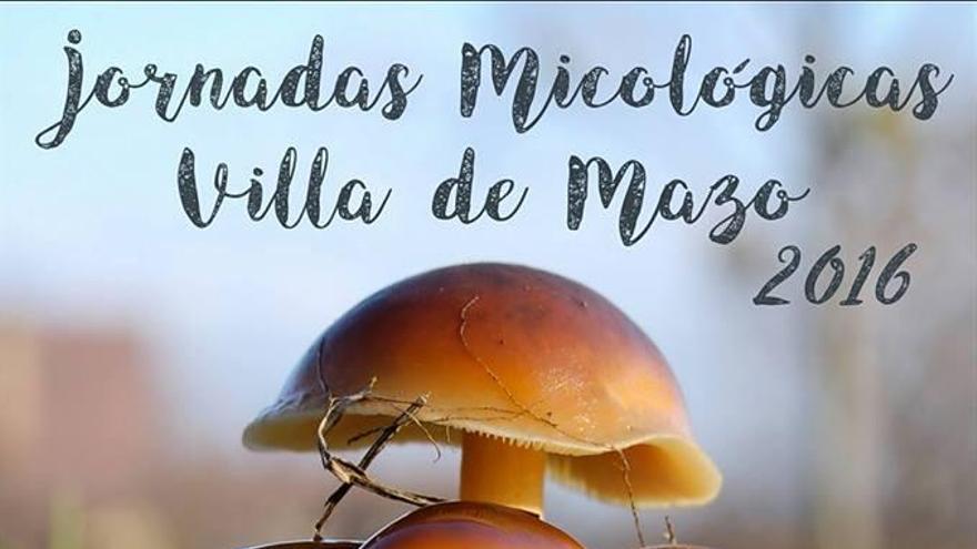 Cartel de las 'Primeras Jornadas Micológicas' de Villa de Mazo.