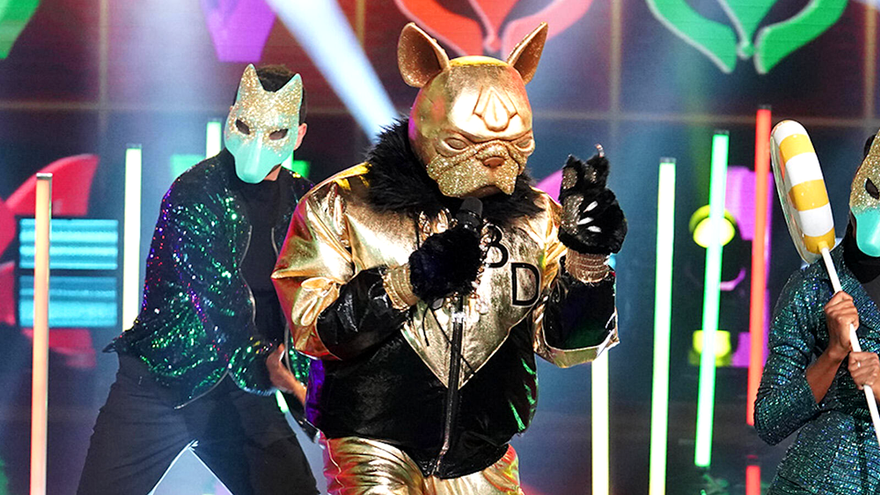 Bulldog en 'The Masked Singer'