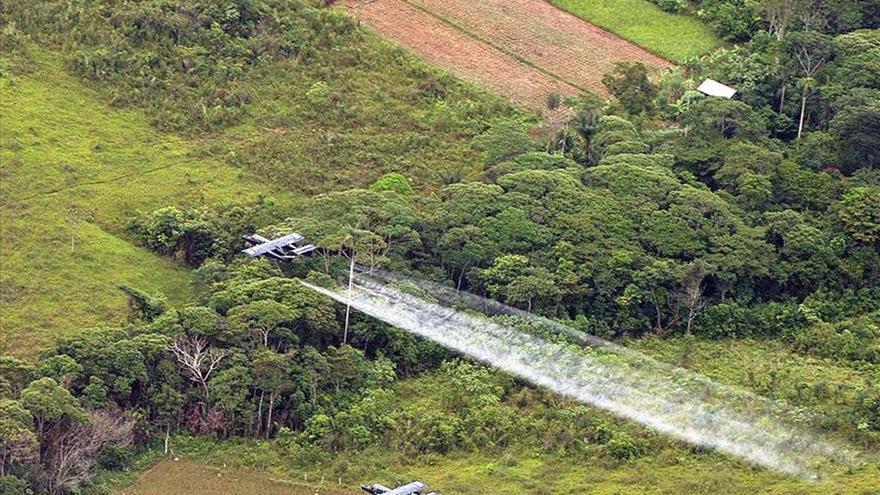 Colombia suspenderá la aspersión con glifosato para combatir los cultivos ilícitos