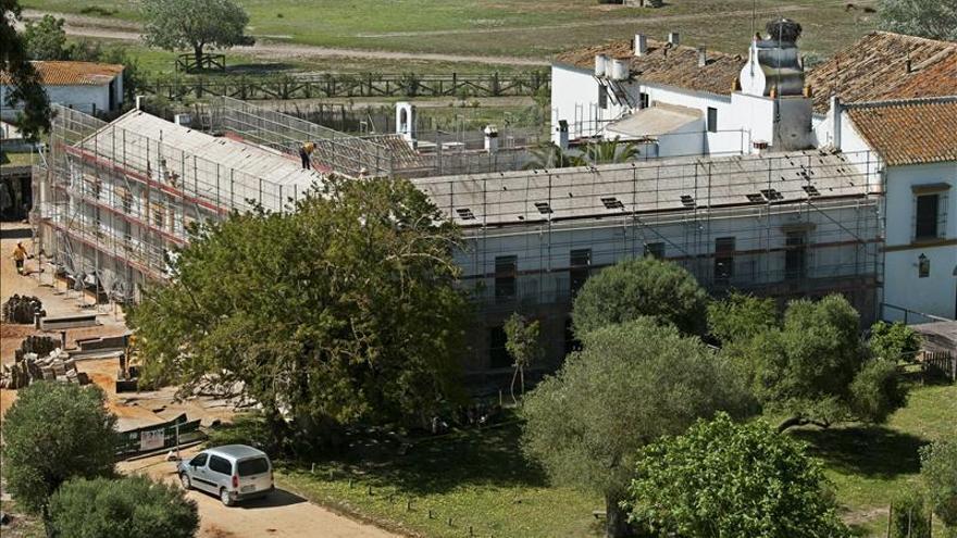 La URJC alerta del riesgo de extinción de la planta 'escoba de charca' de Doñana