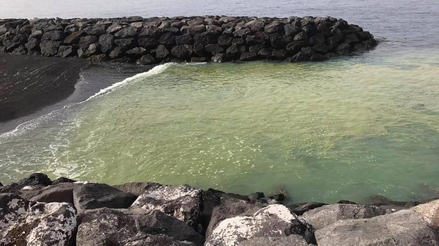 'Bloom' de cianobacterias en la playa artificial de Radazul, este sábado