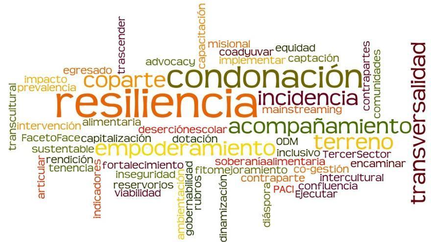 Nube colectiva de palabras que emplean las ONG