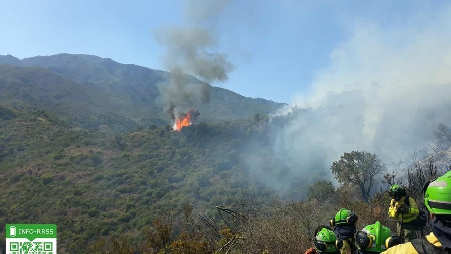 (Resumen) Desalojadas unas 192 viviendas en Estepona por un incendio causado al quemar una colmena