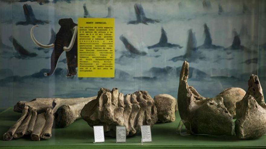 """Expertos locales y extranjeros discuten sobre """"rica arqueología"""" de Nicaragua"""