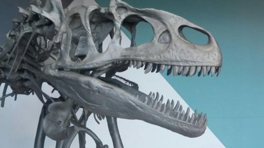 Réplica de un Allosaurus, del periodo Jurásico