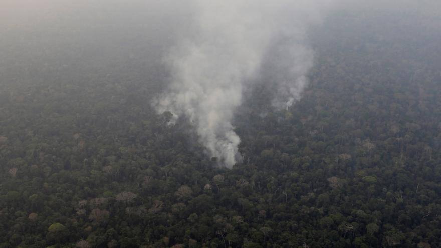 El humo asciende entre los árboles de una zona boscosa en el Amazonas, Brasil 21 de agosto
