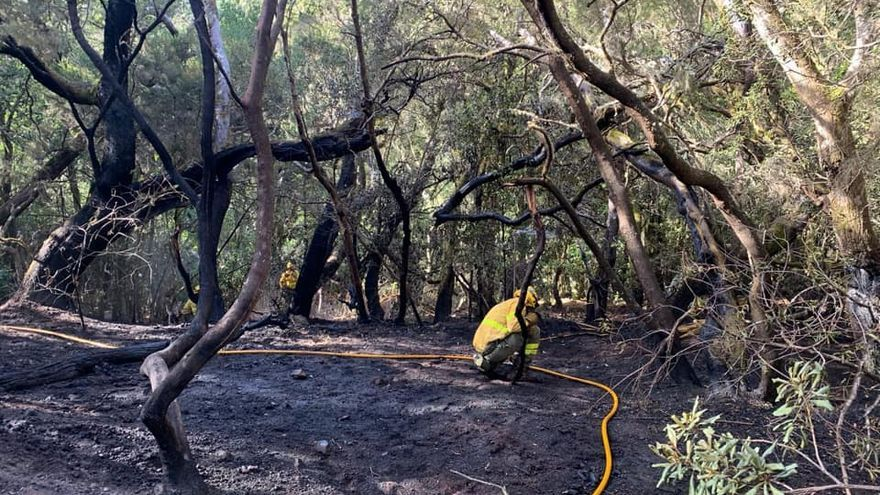 El Cabildo de La Gomera da por controlado el incendio en Las Creces tras quemar 1,5 hectáreas del Parque Nacional de Garajonay