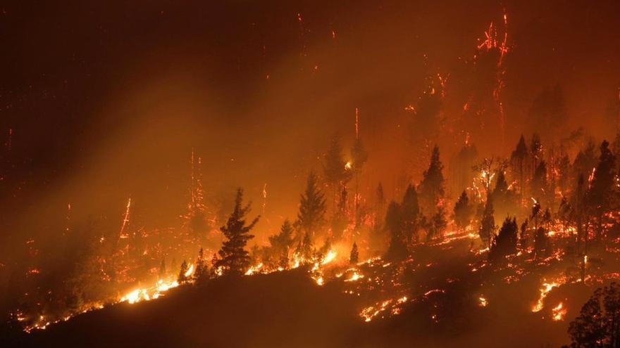 Más de 2.000 hectáreas fueron arrasadas por el fuego en las provincias patagónicas de Chubut y Río Negro a comienzos de marzo