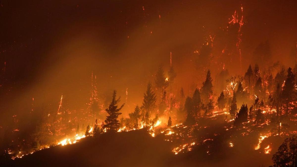 Más de 2.000 hectáreas fueron arrasadas por el fuego en las provincias patagónicas de Chubut y Río Negro a comienzos de marzo.