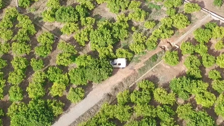 Imatge del presumpte robatori detectat pel dron d'Algemesí