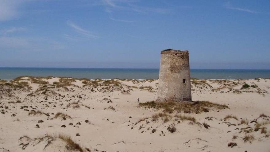 Torre Carbonero.