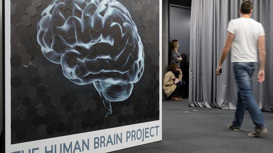 Una imagen de un cerebro humano
