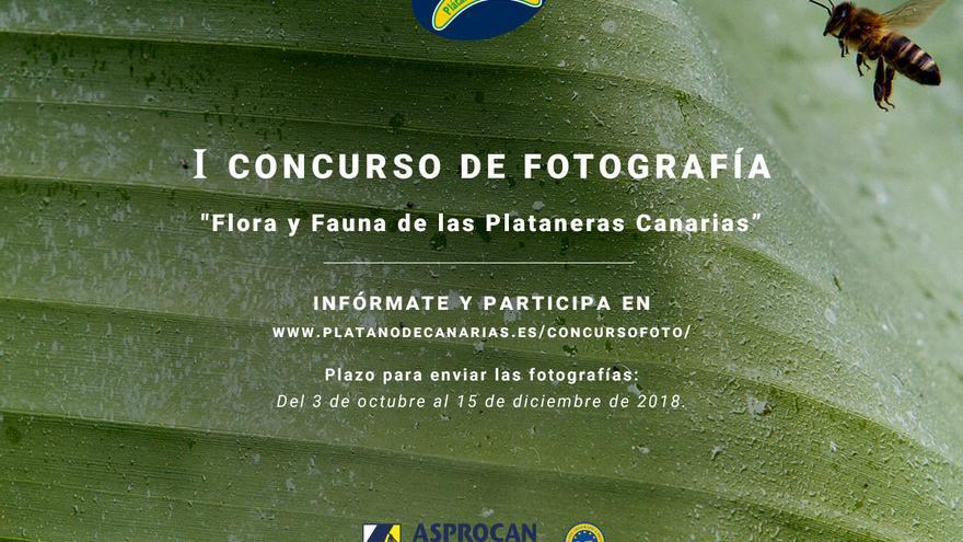Cartel del primer concurso de fotografía 'Flora y fauna de las plataneras Canarias'