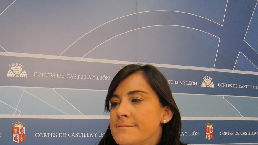 Sánchez (PSCyL) valora la dimisión de Valdeón y cree que no tenía otra opción